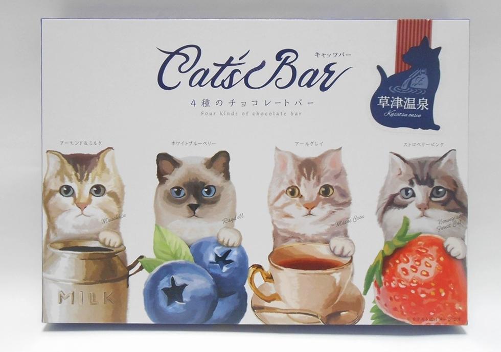 y-cats-bar
